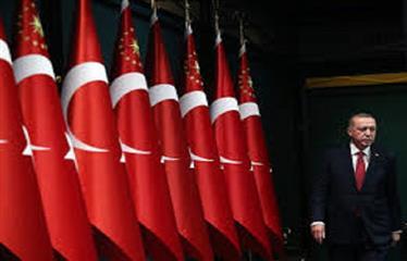 دوافع أردوغان لإجراء انتخابات مبكرة في تركيا